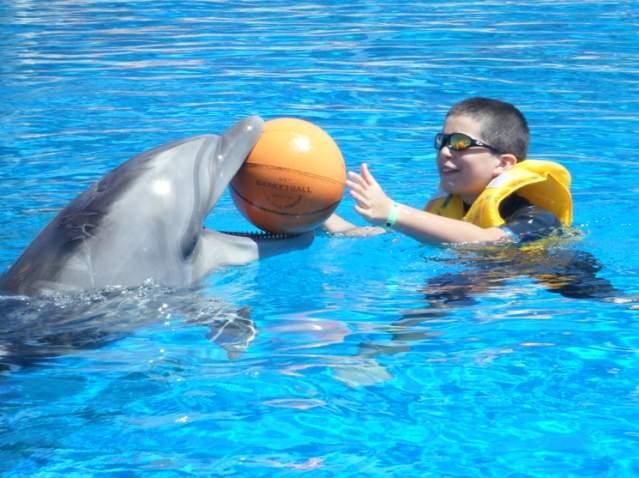Delfiny pomagają podopiecznym Fundacji Rosa -